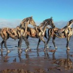 Деревянные лошади Heather Jansch
