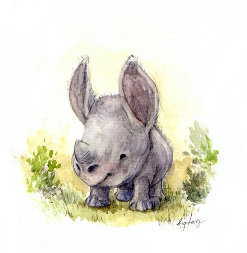 маленький носорог рисунок