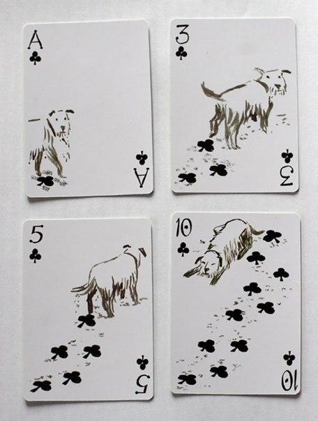 карты с собакой