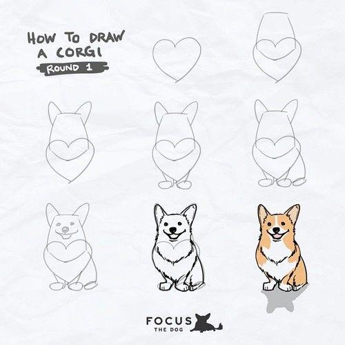how-to-draw-corgi