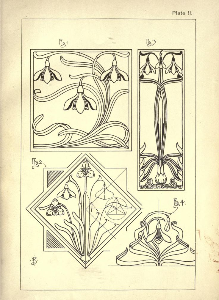 Nature drawing and design. by Steeley, Frank