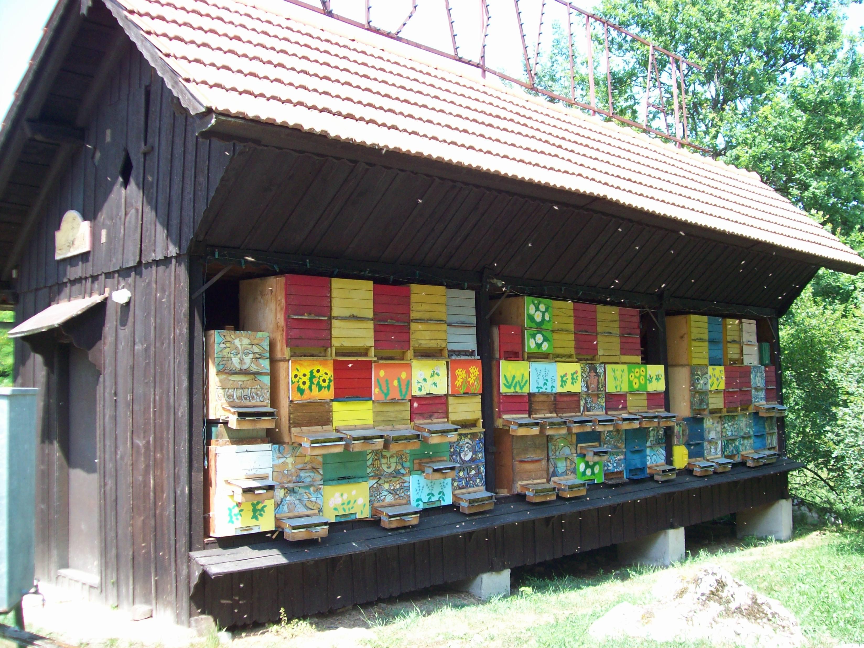 Искусство на словенской пасеке.