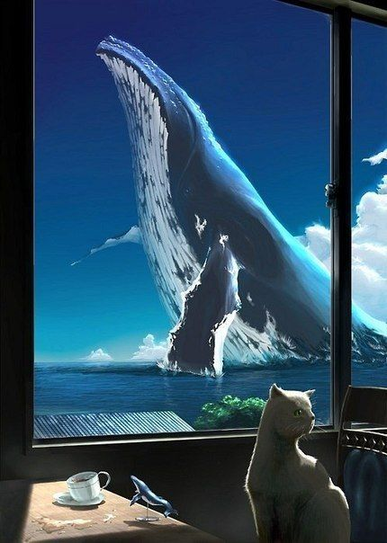 Картинки про китов