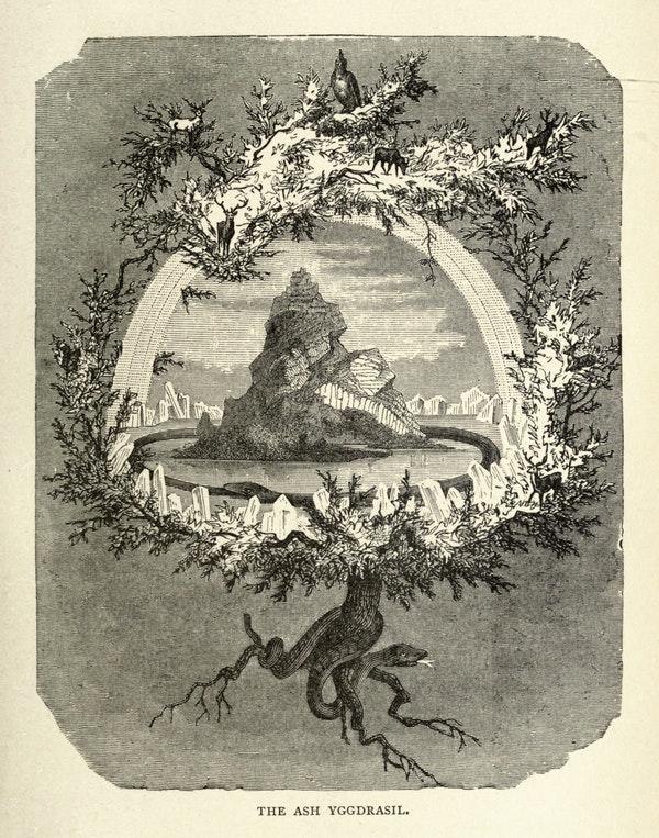 Иггдрасиль на старинных гравюрах